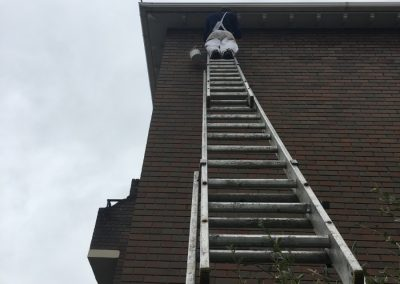 Flats Ladder